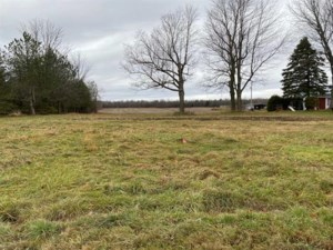 21364626 - Vacant lot for sale