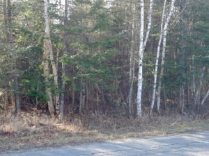 15594356 - Vacant lot for sale