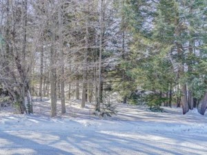 22061726 - Vacant lot for sale