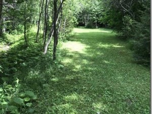 17237084 - Vacant lot for sale