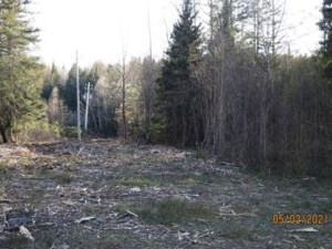 12021140 - Vacant lot for sale