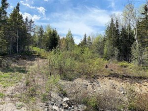 20939657 - Vacant lot for sale