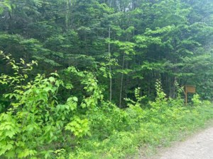 12737132 - Vacant lot for sale