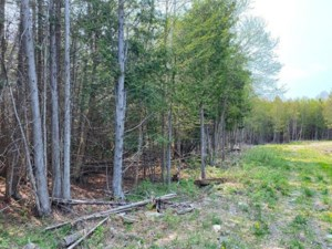 26605269 - Vacant lot for sale