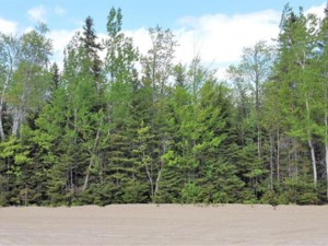 27208401 - Vacant lot for sale