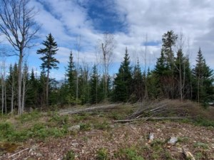 20562047 - Vacant lot for sale