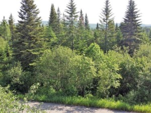19436745 - Vacant lot for sale
