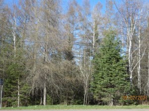 10318272 - Vacant lot for sale