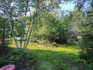 16014977 - Vacant lot for sale
