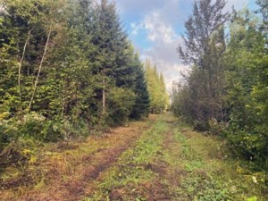 28355590 - Vacant lot for sale