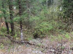 21498001 - Vacant lot for sale