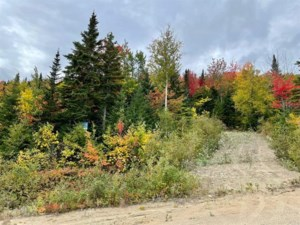 16541265 - Vacant lot for sale