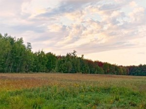 27642581 - Vacant lot for sale
