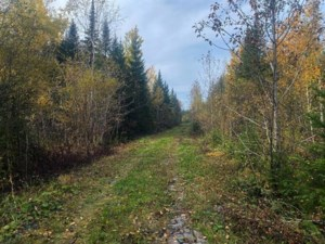 26864254 - Vacant lot for sale
