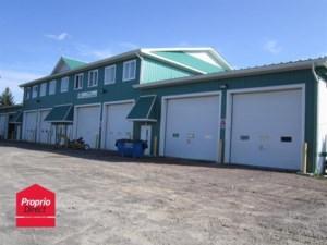 16164462 - Bâtisse industrielle à vendre