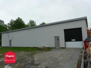 13115925 - Bâtisse industrielle à vendre