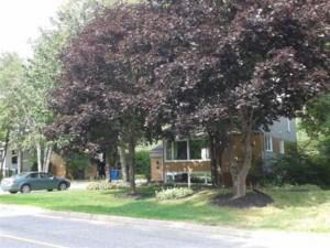 13440199 - Maison à 1 étage et demi à vendre