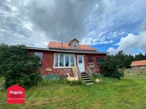 20282150 - Maison à 1 étage et demi à vendre
