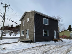 10001165 - Maison à étages à vendre