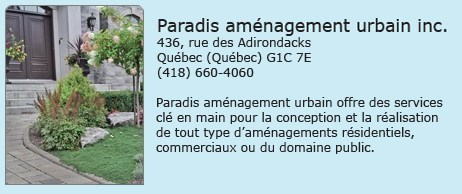 Paradis Amenagement