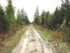 Terre à Bois à vendre