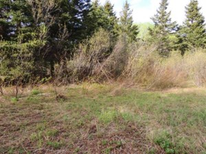 20096538 - Terrain vacant à vendre