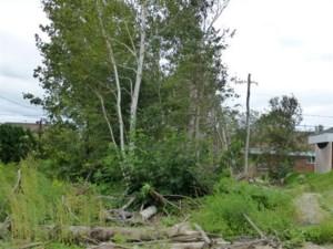 18977455 - Terrain vacant à vendre