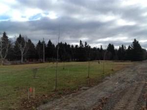 17771701 - Terrain vacant à vendre