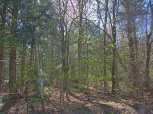 20112808 - Terrain vacant à vendre