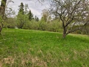 17269463 - Terrain vacant à vendre