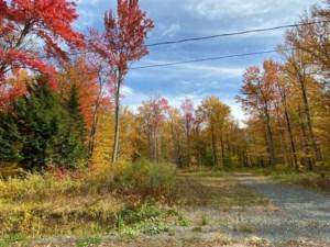 23589007 - Terrain vacant à vendre