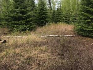 19892406 - Terrain vacant à vendre