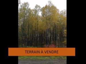 17987721 - Terrain vacant à vendre