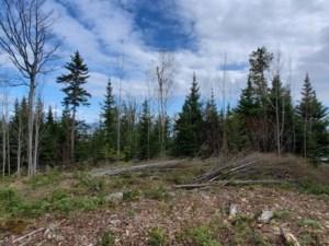 20562047 - Terrain vacant à vendre