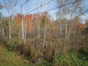 16710725 - Terrain vacant à vendre